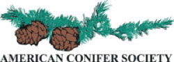 american conifer society logo